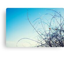 : Blue and Lines : Canvas Print