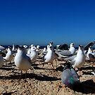 Crowded Beach by Raoul Isidro
