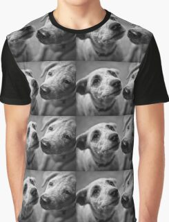 Brothers & Best friends cute dogs Graphic T-Shirt