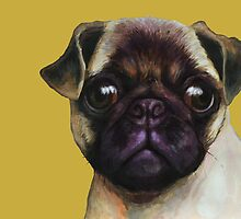 Pug Yellow by Ben Farr