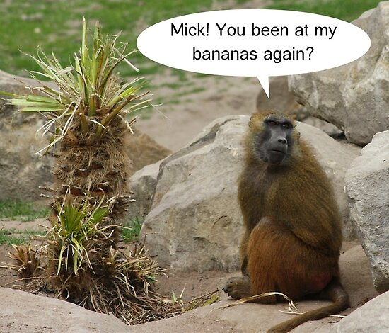 Mick! You been at my bananas again? by Emelyne Brown