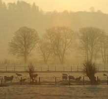 Grasmere Lake District by russw