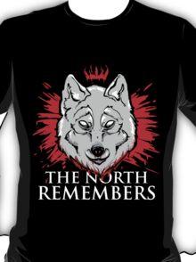 The North Remembers (Dark) T-Shirt