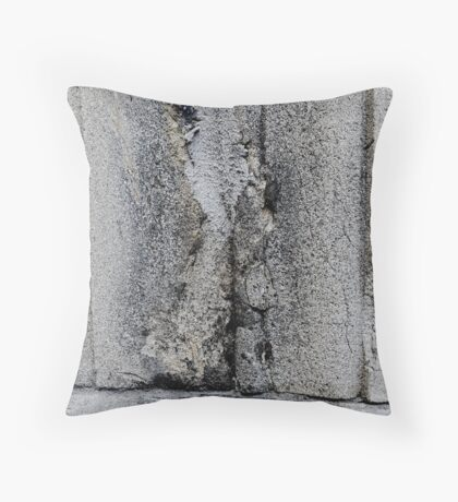 Delve Within Throw Pillow