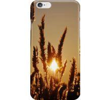 Bushfire Sunset iPhone Case/Skin