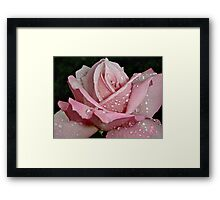 """Rainy Day Rose of Love"" Framed Print"
