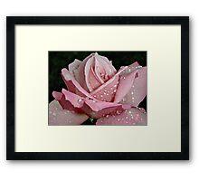 """""""Rainy Day Rose of Love"""" Framed Print"""