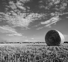Black and White Hay Bale Landscape by Brian Godfrey