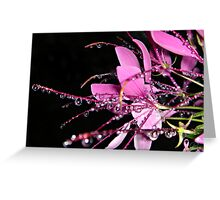 """Jeweled Raindrops Of Hope"" Greeting Card"