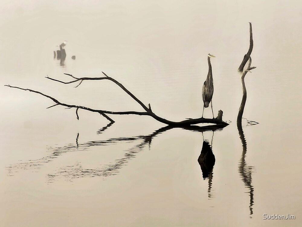 In The Mist by SuddenJim