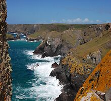 Cornish coastline  by Ian Nicholson