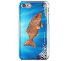 Orange on Blue iPhone Case/Skin