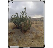 Cactus at Dawn iPad Case/Skin
