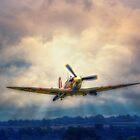 Dawn Raid by Nigel Bangert