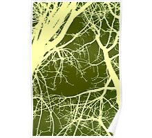 Trees Poster