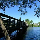 Walking Bridge over Spring Lake by reindeer