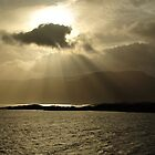 Sunrays in Norwegian fjord by Kelly Eaton