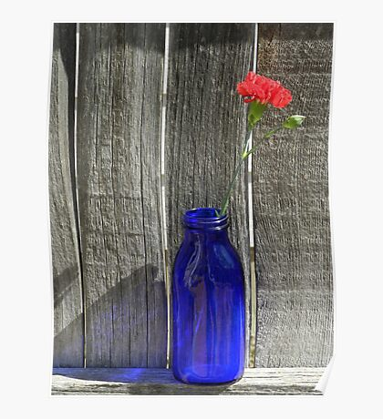 Rustic Red Poster