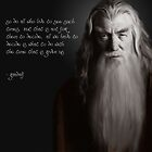 Quotes of Gandalf by tabikkat22
