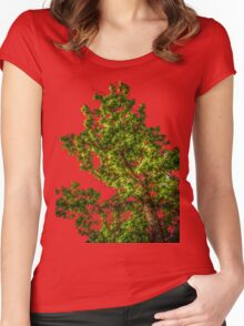 Tree Tee/Hoodie Women's Fitted Scoop T-Shirt