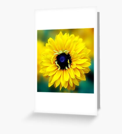 Colour Of Life XXIII [Print & iPad Case] Greeting Card