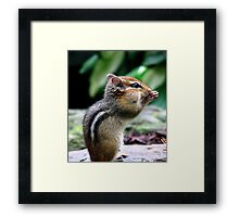 I Love The All You Can Eat Buffet! Framed Print