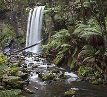 Hopetoun Falls by Shari Mattox-Sherriff