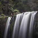 Top of The Falls by Shari Mattox-Sherriff