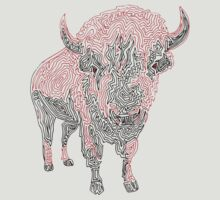 Buffalo by Philip Allgeier