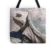 Backyard Dinosaur Tote Bag