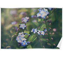 We Lay With the Flowers Poster