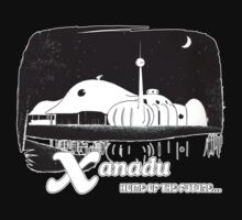 Xanadu Home Of The Future Kissimmee Florida by The Department Of Citrus