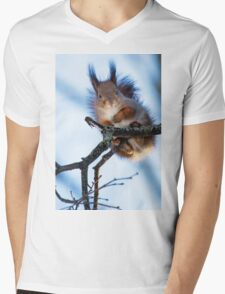Winter Squirrel Mens V-Neck T-Shirt