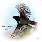 ~ Dark Eyed Junko ~ by Brenda Boisvert