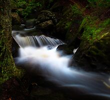 Small Brook by Nazareth