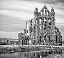 WHITBY ABBEY  by gavin garner