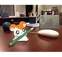 Hamtaro on my desk Photographic Print