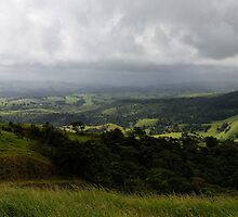 Atherton Tablelands, Queensland by Allport Photography