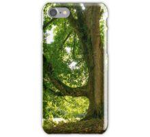 Light catcher iPhone Case/Skin