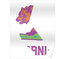 California State Outline [ Purp Green ] | SteezeFSC Poster