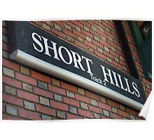 Short Hills Trainstation Poster
