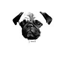 mops puppy white - french bulldog, cute, funny, dog by fuxart