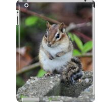 Cute Chipmunk iPad Case/Skin