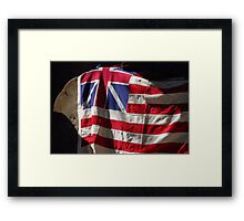 The Grand Union Flag Framed Print