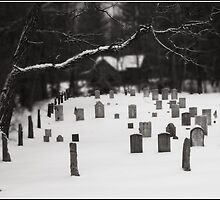 Buffalo Road Cemetary Monochrome by Wayne King