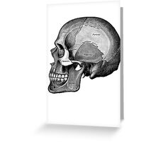 Grey's Anatomy Skull (Black & White, Large) Greeting Card