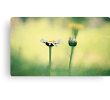 A dream you dream alone is only a dream; a dream you dream together is reality. Canvas Print