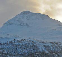 Majestic Mountain Peak by Kelly Eaton