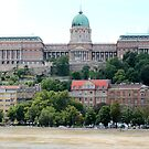 Budapest - The Palace by rsangsterkelly