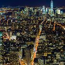 Downtown Manhattan by Randy  LeMoine